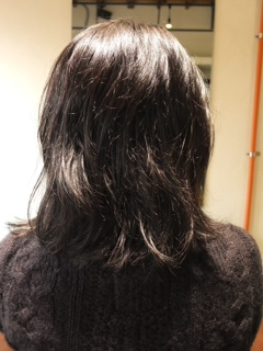 写真 1 (1)