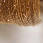 髪強度アップ!カラーをやればやるほどハリコシが出るトリートメントとは?