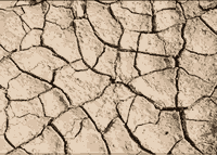 dry-ground-vector-thumbnail2