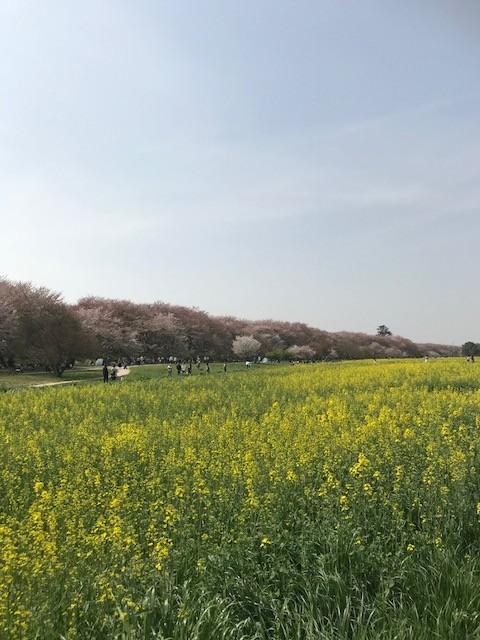 上村の勤務状況について
