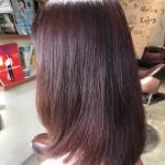 先日毛束実験した「ピンクヴァイオレット」をお客様にさせて頂きました!