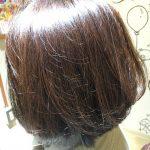 [綺麗なお姉さんシリーズ#1]髪が綺麗なお姉さんは魅力的